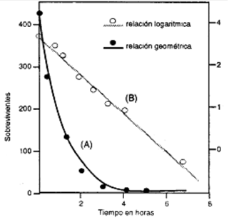 cinética bacteriana
